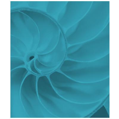 AXI_velocity-icon-crop