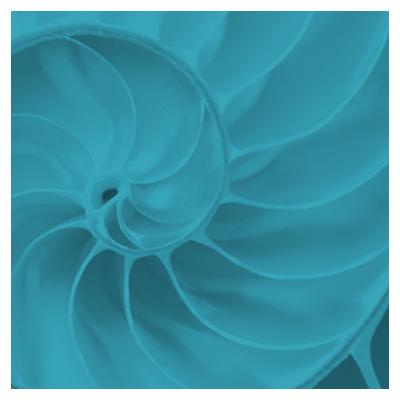 AXI_hex-icon-crop